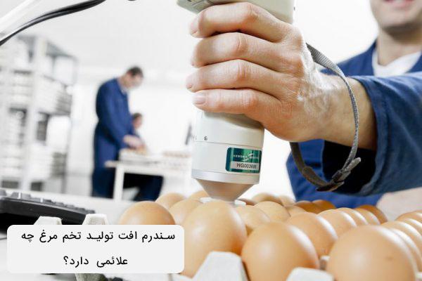 علائم سندرم افت تولید تخم مرغ