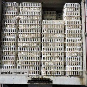کشف چهار تن مرغ قاچاق در شهرستان ملایر استان همدان