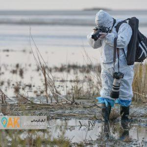 زنگ خطر شیوع آنفلوآنزای فوق حاد طیور در استان سیستان و بلوچستان