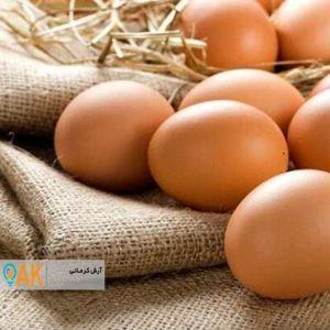 افزایش 200 درصدی تولید تخم مرغ صنعتی در استان گلستان