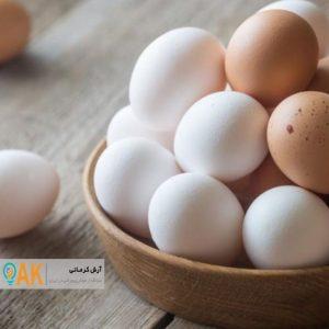 سالانه 6 هزار و 800 تن تخم مرغ در استان کردستان تولید میشود